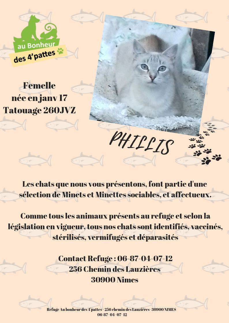 ADOPTEE-PHILLIS