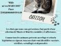 ODILON