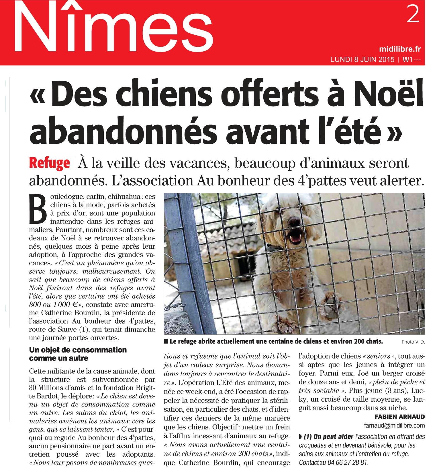 http://aubonheurdes4pattes.com/wp-content/uploads/2015/06/NIMES-4.1.jpg