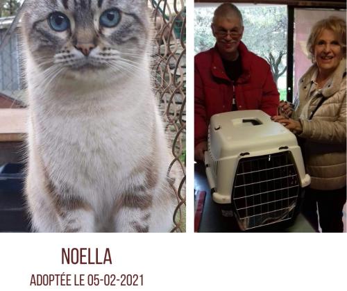 NOELLA adoptée le 06 02 2021