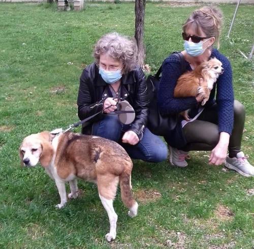 Paupiette et Mona adoptées le 06 02 2021
