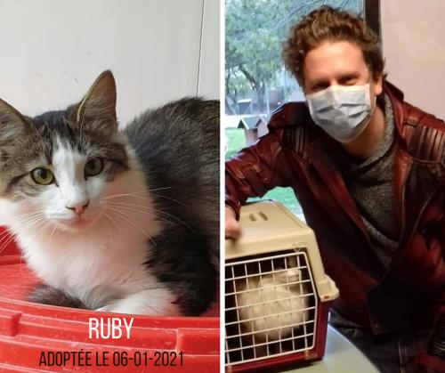 RUBY adoptée le 06-01-2021