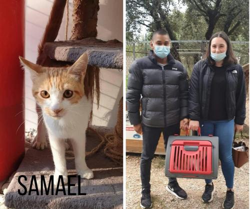 SAMAEL adopté 20-10-21 3