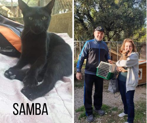 SAMBA adoptée 13-10-21 3